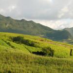 TUI lata na Mauritius – sprawdź ofertę